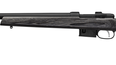 cz_527_varmint_laminated_left